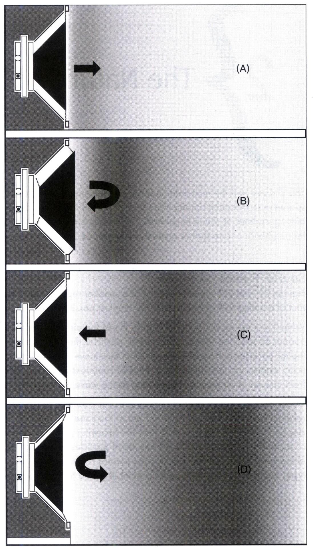 Một chu kỳ chuyển động của một cone loa